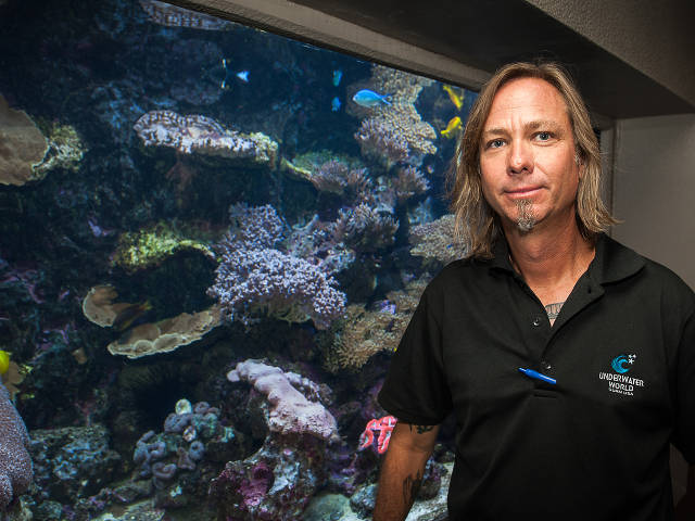 coral exhibit at Underwaterworld Guam and Curator Mike McCue (Paul Selvaggio)